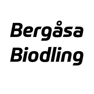 Bergåsa Biodling